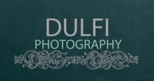 Dulfi logo